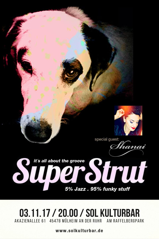 November 2017. Super Strut feat Shanai, www.solkulturbar.de