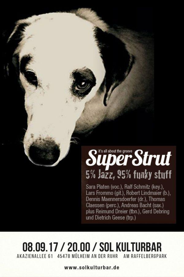 September 2017, Super Strut live @sol kulturbar