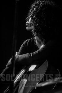 Illay Chester, 2015
